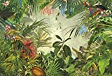 Komar XXL4-031368x 248cm 'In die Wild Tropical Rain Forest Scenic' Tapete Wandbild-Grün (4Stück)