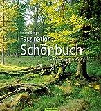 Faszination Schönbuch: Ein Report aus dem Wald - Roland Bengel