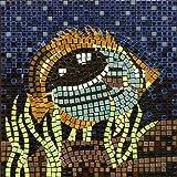 kit de mosaico, 20x20cm, Pez