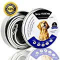 ProHomer Flea and Tick Collar for All Kinds of Dogs from ProHomer