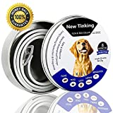 Flea and Tick Collar for All Kinds of Dogs and Cats - Anti-Parasite