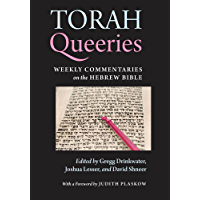 Torah Queeries: Weekly Commentaries on the Hebrew Bible (English Edition)