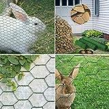 Casa Pura® Hühnerdraht Grün   Garten, Balkon, Tiere   Dreifach, Geflecht   mehrere Größen–Draht aus Polyvinylchlorid-Kunststoff, grün