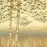 Eurographics JAW5427 Fine Art Print Birch Silhouette I by James Wiens 70 x 70 cm