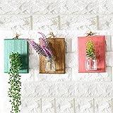 Parete in vetro da appendere, vasi, Goodchanceuk 3D da parete, con tagliere in legno retro idroponica piante da appendere terrario (legno + vetro vaso) Pink, Coffee&green