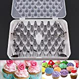 #10: Kurtzy Stainless Steel Cake Icing Nozzles For Decorating Cupcake Pastries Desserts Tarts Pie Set Of 52 Assorted