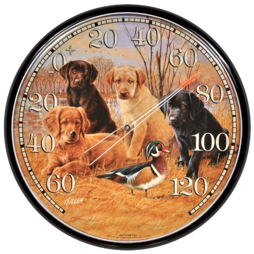AcuRite 01712° Wand Thermometer, Labrador Welpen -