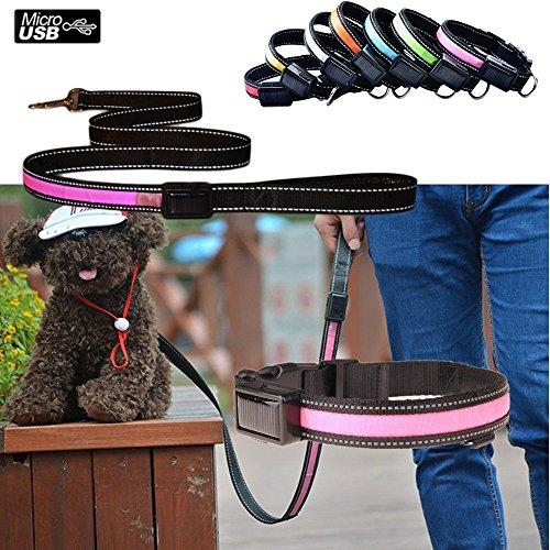 Aution House USB Ricaricabile Collare & Guinzaglio Riflettente Luci Lampeggianti LED Animali di Sicurezza del Cane, Impermeabile, Misura per Piccolo Medio Grande Cane di Animali Domestici (COLLARE M 40-50CM, ROSA)