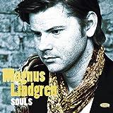 Songtexte von Magnus Lindgren - Souls