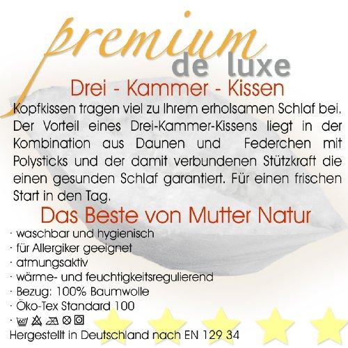 Premium de Luxe975.22.001 Daunen Dreikammerkissen (80×80 cm, Gänseflaum, 800 gr) - 5