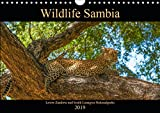 Wildlife Sambia (Wandkalender 2019 DIN A4 quer): Sambia mit seinen wunderschönen und tierreichen Nationalparks - ein Land für Natur- und Tierliebhaber. (Monatskalender, 14 Seiten ) (CALVENDO Tiere) - Photo4emotion.com