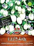 Eierbaum Essbare Früchte