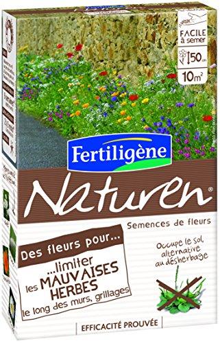Naturen NFMUR Limiter les Mauvaises Herbes pour Murs 60 g