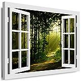 BOIKAL XXL171-2 Optische Täuschung 3D Bild auf Leinwand Fensterblick 60 / 50 cm Weiß - Querformat Farbe + Große 21 Variante ! Weg, Wald, Sonnenstrahlen Bäume