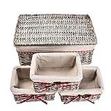 Bloomma Cestino in vimini, Set di 4 cestini portaoggetti intrecciati in vimini e cesto di lino, cestini per armadio per ripostiglio,bagno,camera da letto,giocattoliContenitori - 3 piccoli,1 grande