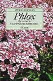 Phlox. Stauden- und Polsterphloxe