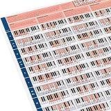 The Really Useful Piano Poster - Aprende Piano, Teoría Musical y Composición con nuestra Tabla de Escalas, Acordes y Círculo de Quintas para Piano ilustrada - Tamaño A1 - Versión Plegada
