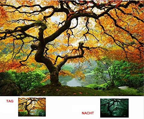 Startonight Wall Art Canvas Maple Tree, Nature,