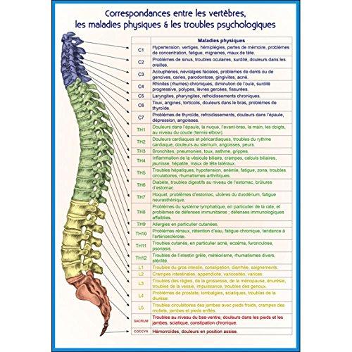 Correspondances entre les vertèbres, les maladies physiques & les troubles psychologiques