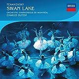Tchaikovsky: El Lago De Los Cisnes