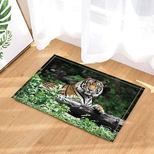 (fdswdfg221 Safari-Dekor Wild Animal Tiger auf Stamm gegen grüne Wald Bad Teppiche liegen Rutschfeste Fußmatte Fußbodeneingänge Indoor Haustürmatte Kinder Badmatte Bad-Accessoires)