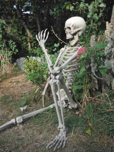 5.5FT LIFE SIZE SKELETON HALLOWEEN PROP DECORATION