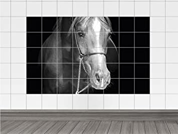 Sticker Tile Stickers Animals Horse Arabian Black Bathroom (tile: 10x25cm  // Image:
