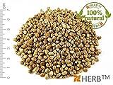 HANFSAMEN - NIERENTEE 100g Cannabis Sativa L., seeds (samen) ungeschalten