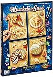 Noris Spiele Schipper 609340654 - Malen nach Zahlen, Muscheln im Sand, Quattro, 18 x 24 cm