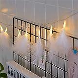 Wankd 2 m 20 LED lichtsnoer. Witte veren lichtkettingen met batterijvoeding Romantische wand gordijn decoratie voor bruiloft