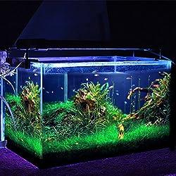 Simbr - Luces LED para acuarios y estanques, (1200 lumens, 95-115cm 144LED, Color de luz blanco y azul, con enchufe EU)