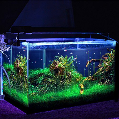 simbr aquarium beleuchtung lampe led aufsetzleuchte schwarz 30 50cm bunte. Black Bedroom Furniture Sets. Home Design Ideas