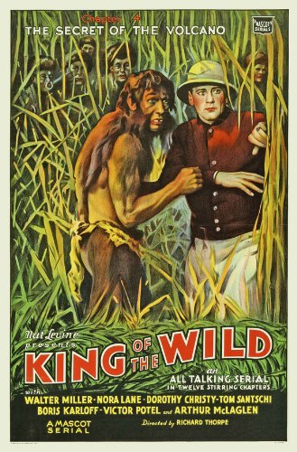 King of the Wild Plakat Movie Poster (11 x 17 Inches - 28cm x 44cm) (1931) E