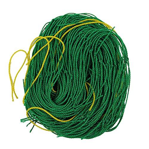 everpert Net Klettergerüst Garten-Net Pflanze Zaun 10Geräte (Garten Pflanzen Zaun)