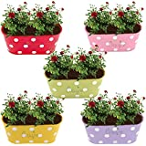 Cinagro Dotted Oval Railing Planter - Violet, Pink, Yellow, Lemon, Red Colors (Pack Of 5)