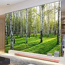 Papel de Pared Tridimensional Bosque De Abedul Verde 450Cmx300Cm
