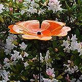 Tradicional de luz acrílico De colour naranja y Colour de rosa globo de flores 33612O