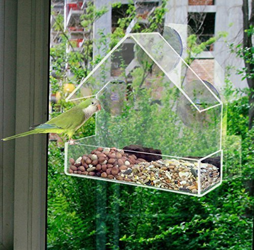 green-blade-finestra-bird-feeder-in-perspex-trasparente-di-sementi-di-aspirazione-hanging-bird-feede