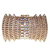 Bonjanvye Mini Barrels Shaped Clutch Bag Bling Purses and Handbags for Girls AB Gold