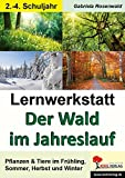 Lernwerkstatt Der Wald im Jahreslauf: Pflanzen & Tiere im Frühling, Sommer, Herbst und Winter