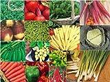 Gemüsesamen-Set mit 15 Päckchen