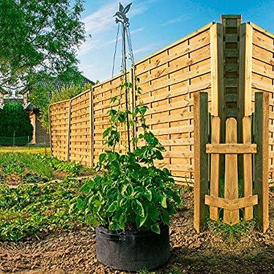 Gärtner Pötschke Bohnen-Wigwam von Gärtner Pötschke auf Du und dein Garten