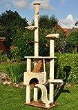 nanook Katzen-Kratzbaum SIGURD, groß XXL deckenhoch (275 cm), große Höhle, 2 Liegemulden, schwer und standfest, Kratzstämme 11 cm Ø - beige braun