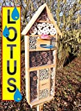 Insect Hotel with Trough SDV Holo OS And Feeder...