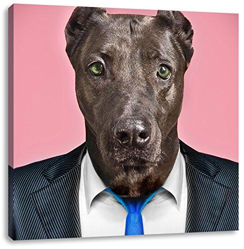 Manager Hund mit Anzug, Format: 70x70 auf Leinwand, -