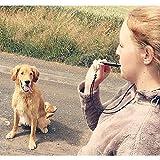 ACME Hundepfeife No. 211,5 + GRATIS Pfeifenband | Original aus England | Ideal für die Hundeausbildung | Robustes Material | Genormte Frequenz | Laut und weitreichend (schwarz) - 5