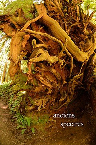 anciens: spectres: Un cimetière majestueuse (Ancients t. 1)