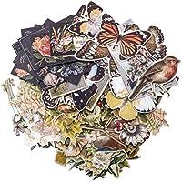 Unbekannt Tim Holtz Schichten Botanical Craft Zubehör, Mehrfarbig