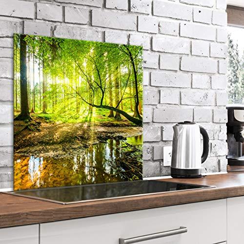 murando Spritzschutz Glas für Küche 60x60 cm Küchenrückwand Küchenspritzschutz Fliesenschutz Glasbild Dekoglas Küchenspiegel Glasrückwand Landschaft Natur Wald - c-B-0505-aq-a