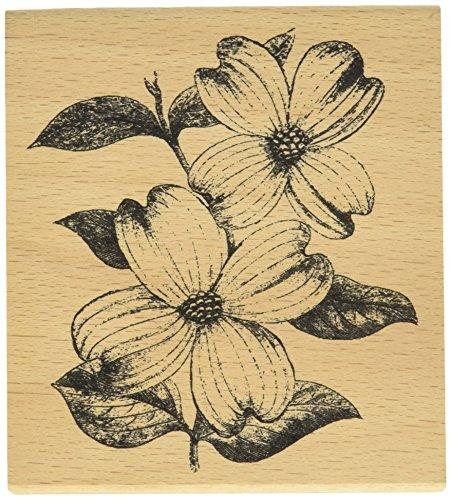 hampton-art-legno-cam-and-chloe-mounted-stamp-4-x-35-di-fiori